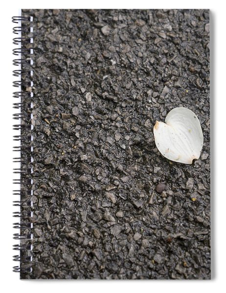 Lonely Dogwood Petal Spiral Notebook