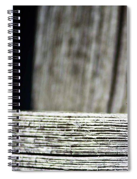 Lonely Ladybug Spiral Notebook