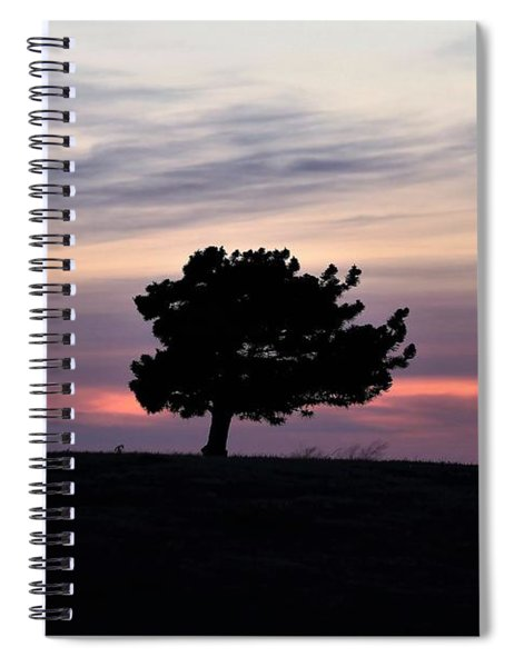Lonely Little Pine At Sunset Spiral Notebook