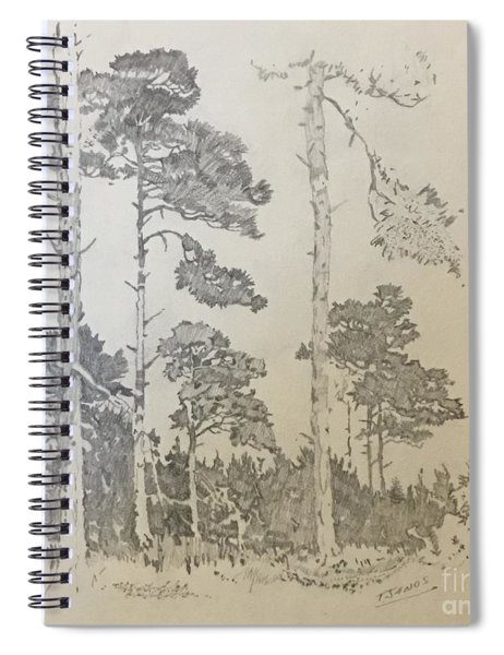 Lonely Pines Spiral Notebook