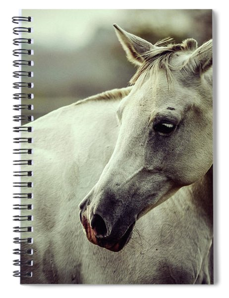Lonely White Horse Spiral Notebook
