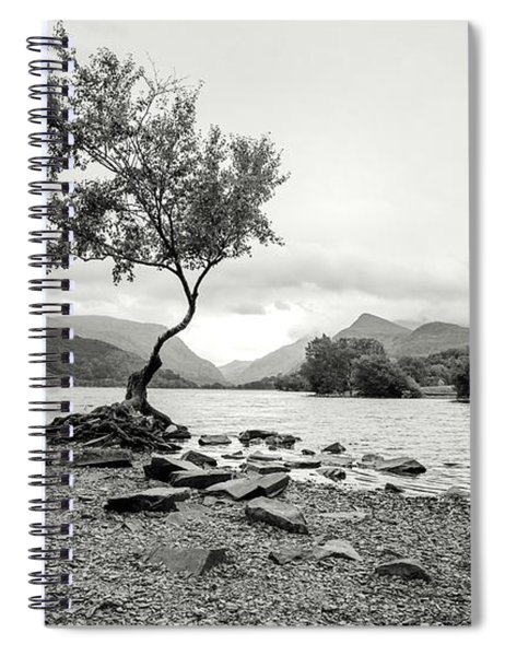 Loney Tree Snowdonia Wales Journey Of Mountains Spiral Notebook
