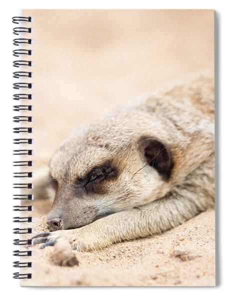 Long Day In Meerkat Village Spiral Notebook