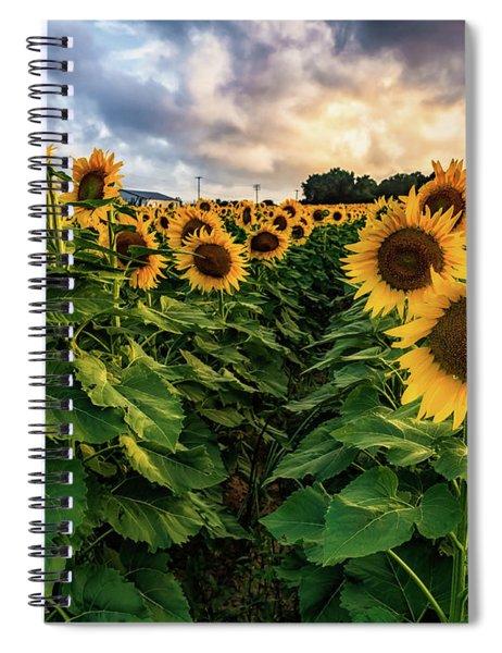 Long Island Sunflowers  Spiral Notebook