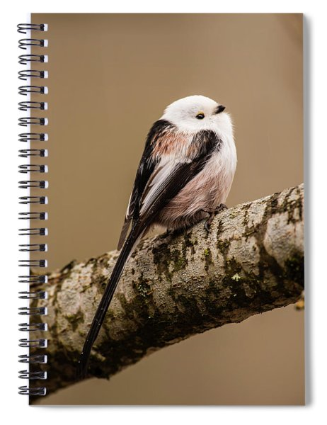 Long-tailed Tit On The Oak Branch Spiral Notebook