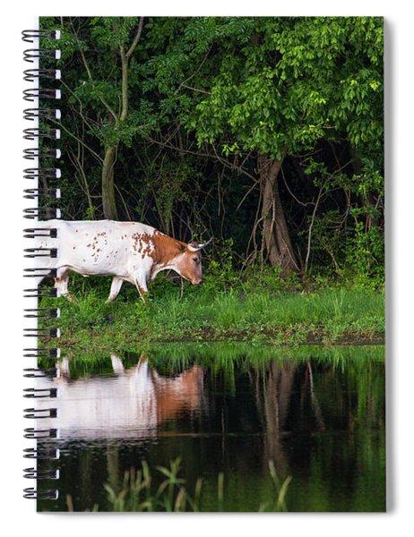 Longhorn #2 Spiral Notebook