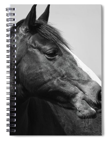 Looking Bw Spiral Notebook