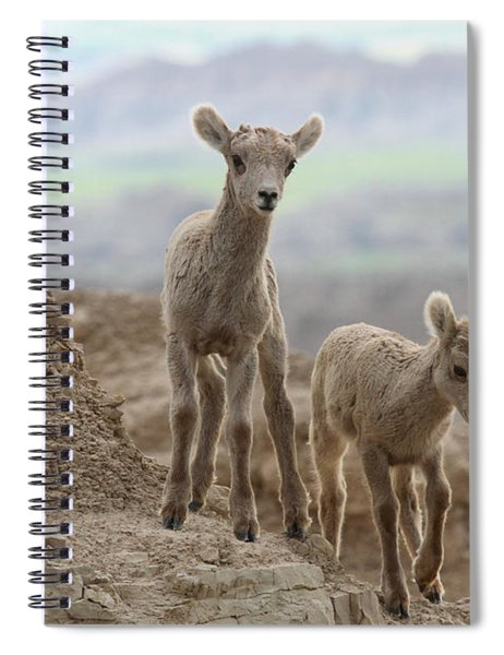 Looking For A Way Down Spiral Notebook