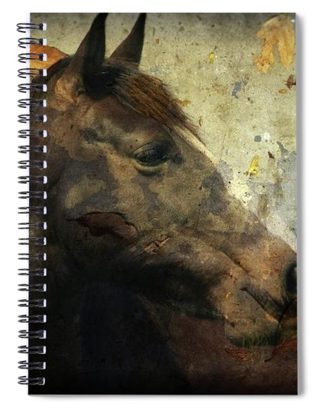 Looking I Fall For You Spiral Notebook