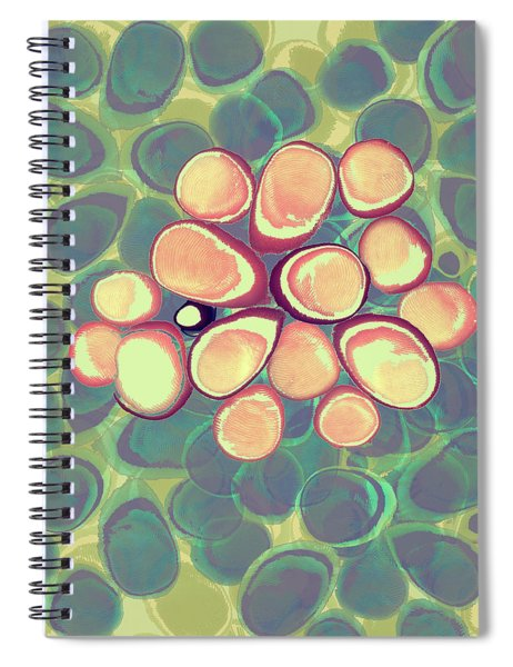 Loopy Dots #5 Spiral Notebook