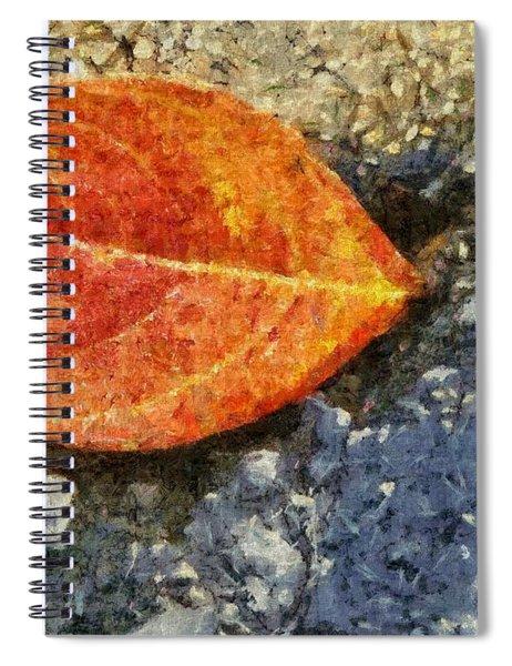 Loose Leaf Spiral Notebook