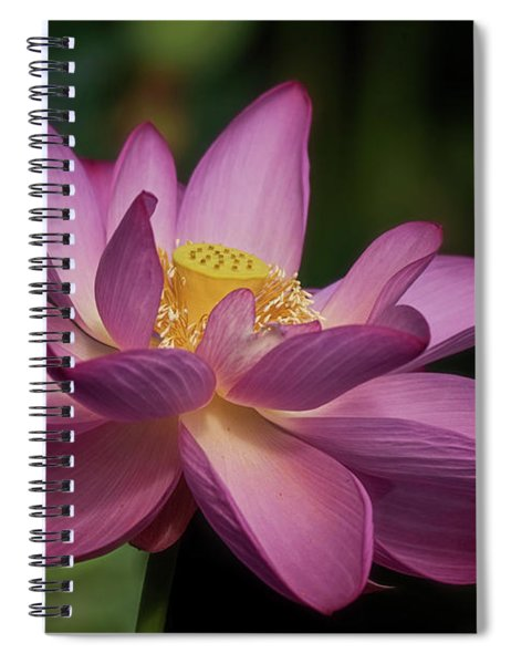 Lotus Bloom Spiral Notebook