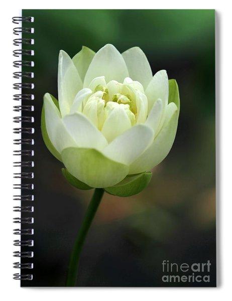 Lotus Blooming Spiral Notebook