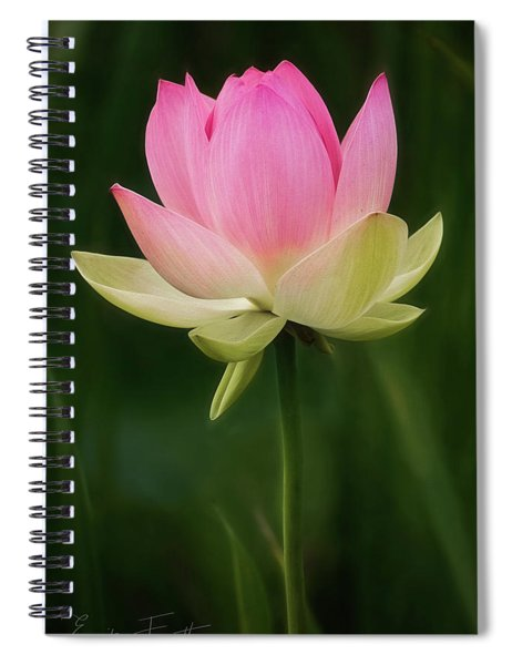 Lotus Blossom Spiral Notebook