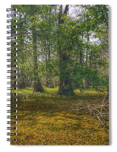 Louisiana Swamp Spiral Notebook
