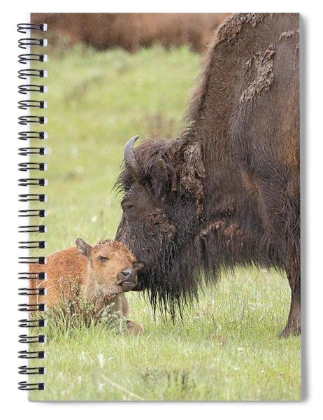 Love My Mama Spiral Notebook