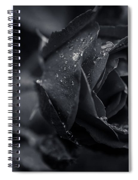 Sweet Love Roses And Water Spiral Notebook
