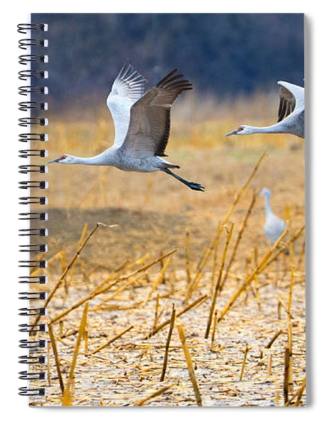 Low Level Flyby Spiral Notebook