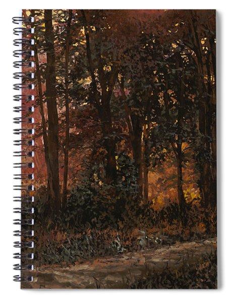 Luci Nel Bosco Spiral Notebook
