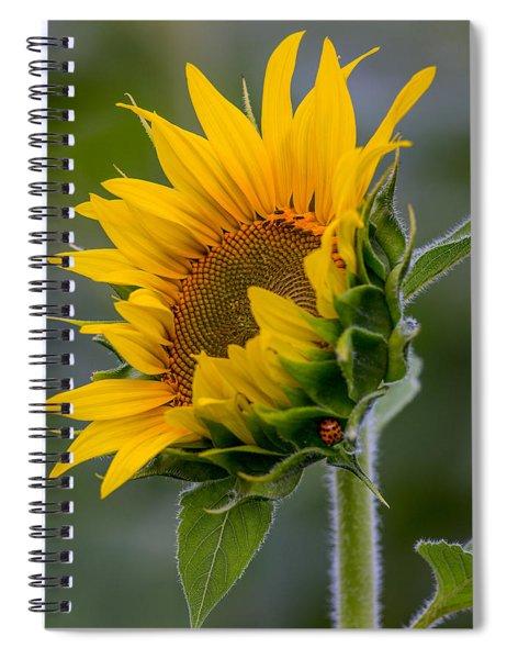 Lucky Lady Spiral Notebook