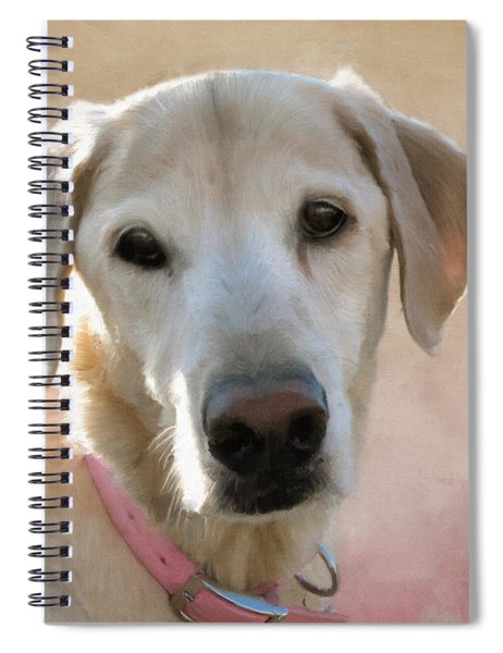 Lucy In Pink Spiral Notebook