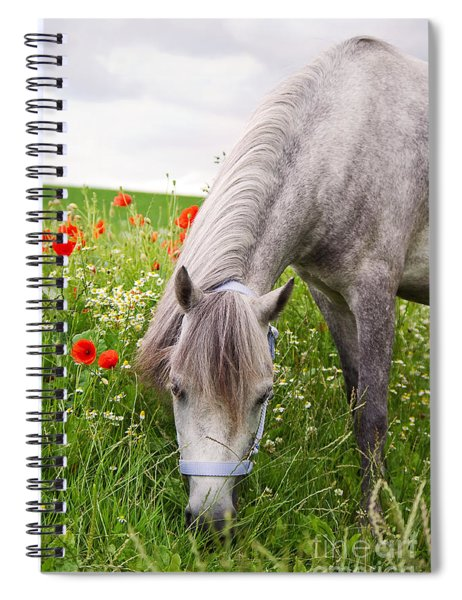 Lulu And The Poppies  Spiral Notebook