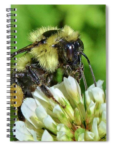 Lunch In The Garden Spiral Notebook
