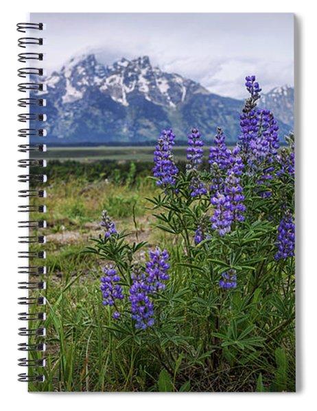 Lupine Beauty Spiral Notebook