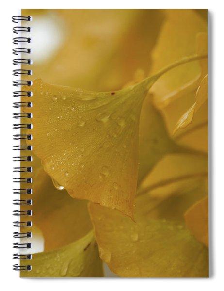 Luscious Ginkgo Gold Spiral Notebook