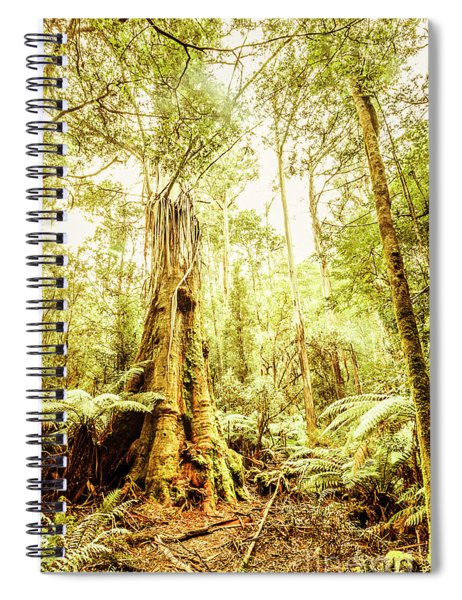 Lush Tasmanian Forestry Spiral Notebook