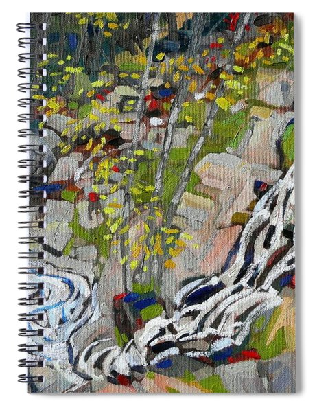 Lyn Hairpin Spiral Notebook