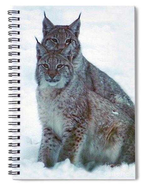Lynx Twins Spiral Notebook