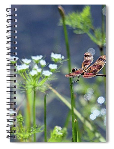 Magic Dragon Spiral Notebook
