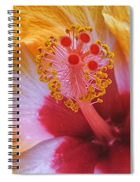 Magical Hibiscus  Spiral Notebook