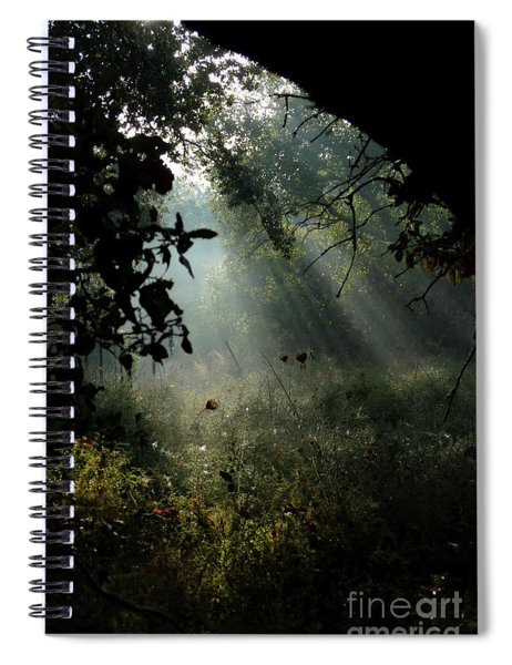 Magical Woodland Lighting 02 Spiral Notebook