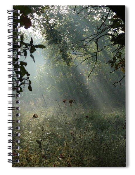 Spiral Notebook featuring the photograph Magical Woodland Lighting by Arik Baltinester