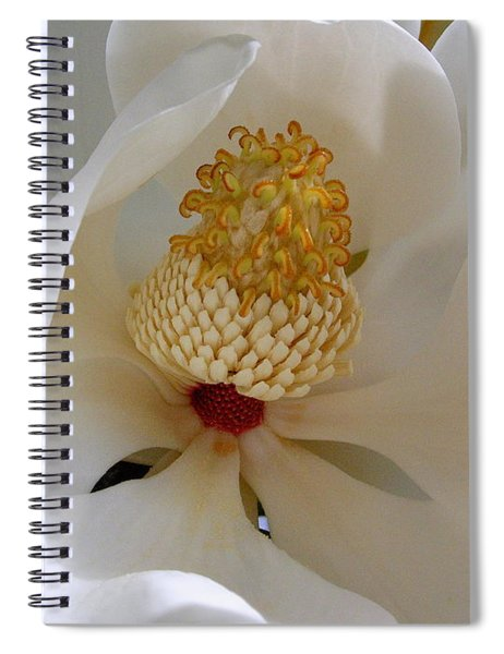 Magnolia Happiness Spiral Notebook