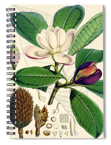 Magnolia Hodgsonii Spiral Notebook