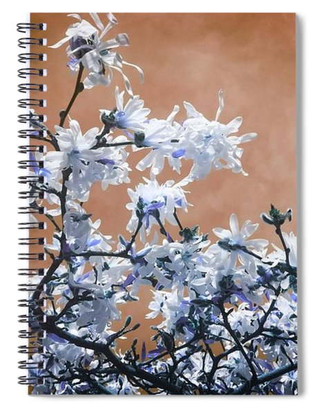 Magnolia Sky In Amber Spiral Notebook