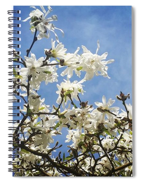 Magnolia Sky Spiral Notebook