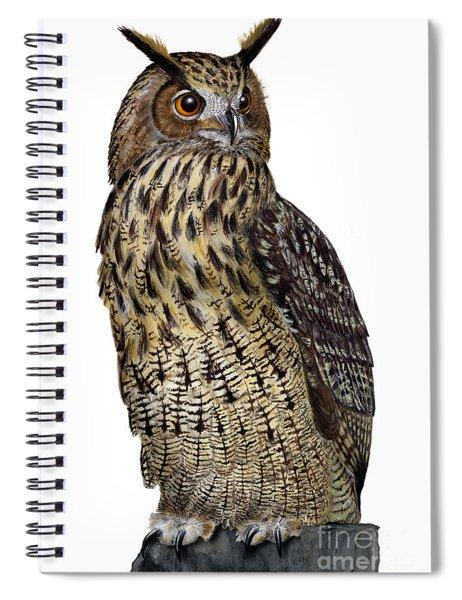 Majestic Eurasian Northern Eagle Owl Bubo Bubo - Hibou Grand-duc - Buho Real - Nationalpark Eifel Spiral Notebook