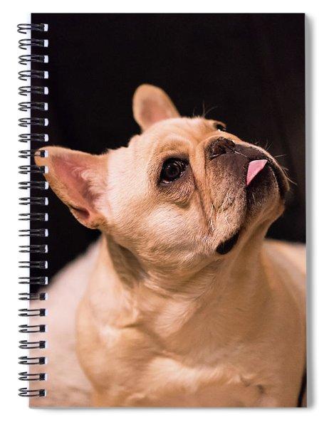 Make Me Spiral Notebook