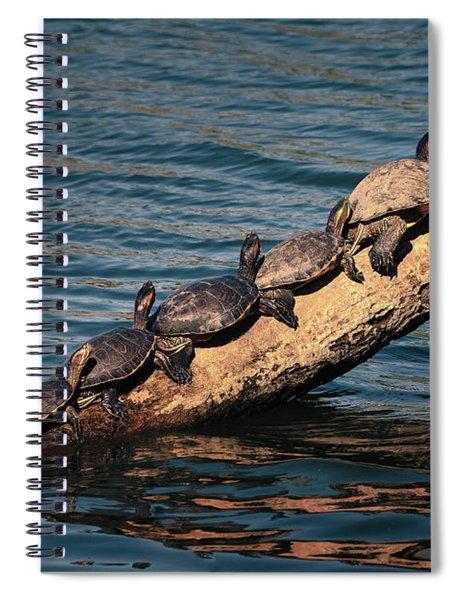 Make Room For Me Spiral Notebook