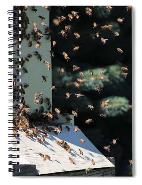 Making Honey - Landscape Spiral Notebook