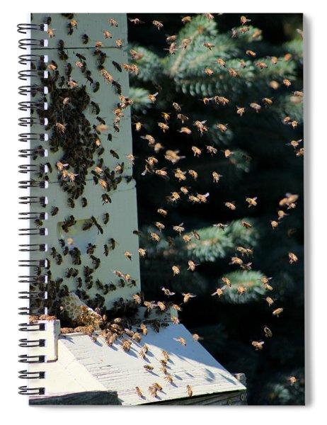 Making Honey - Portrait Spiral Notebook