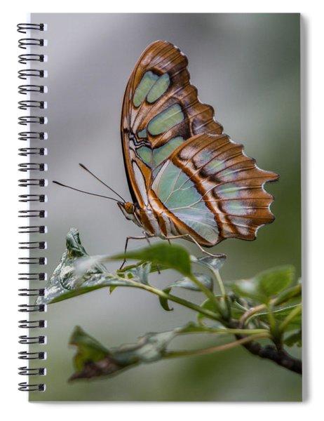 Malachite Butterfly Profile Spiral Notebook