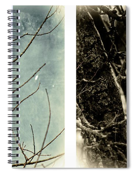 Male And Female Cardinal Spiral Notebook