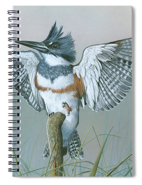 Male Belted Kingfisher Spiral Notebook