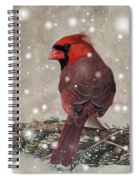 Spiral Notebook featuring the photograph Male Cardinal In Snow #1 by Patti Deters