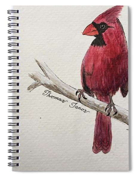 Male Cardinal In Winter Spiral Notebook